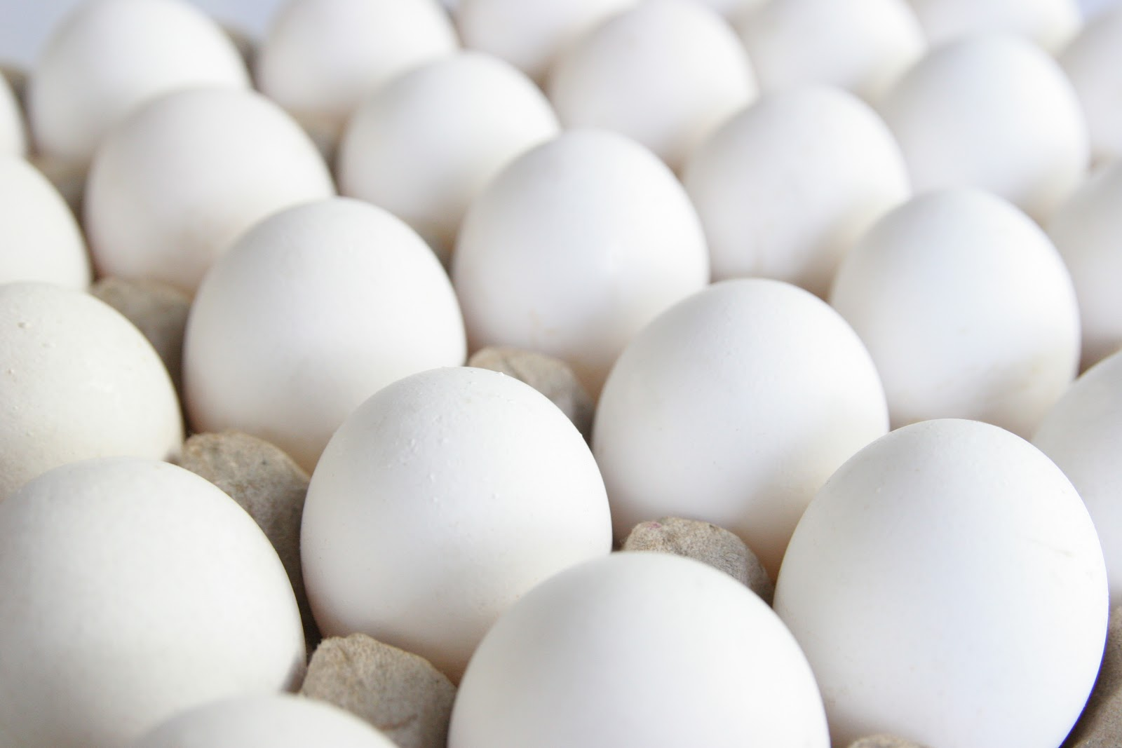 how to tell if fresh eggs are good or bad
